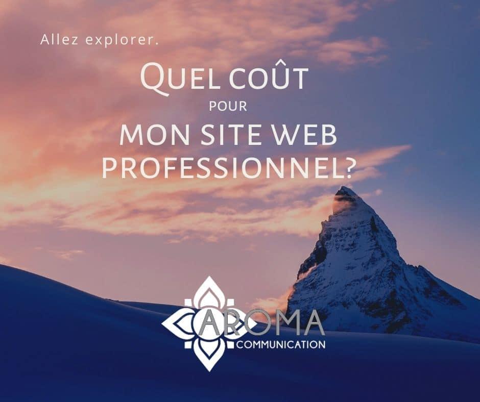 Illustrer coût site web professionnel